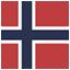Norwegian flag icon