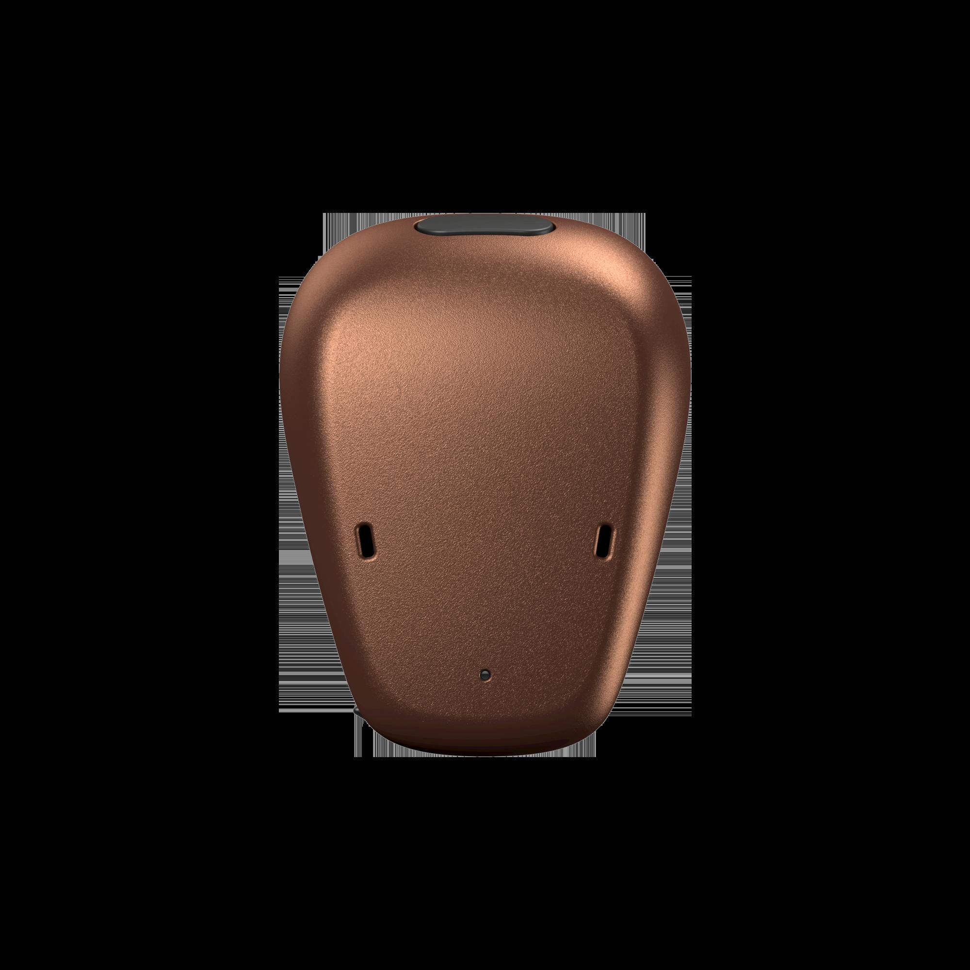 Baha6_ENV Front_Copper Front 2000x2000 Medium_res.png